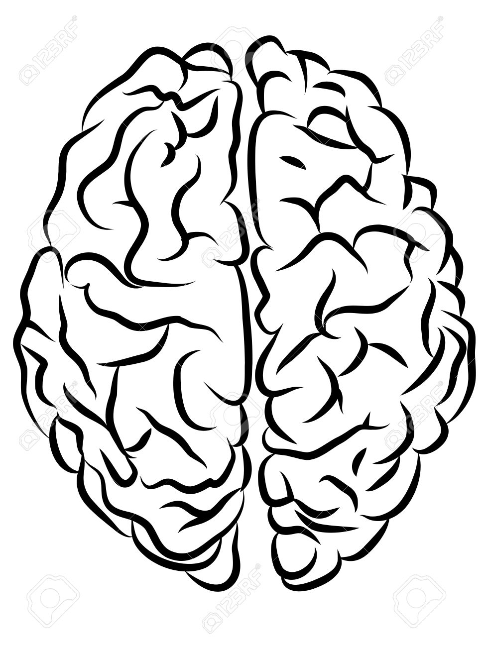 974x1300 Vector Black And White Brain Contours, Cartoon Style Royalty Free