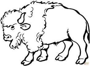 Cartoon Buffalo Drawing