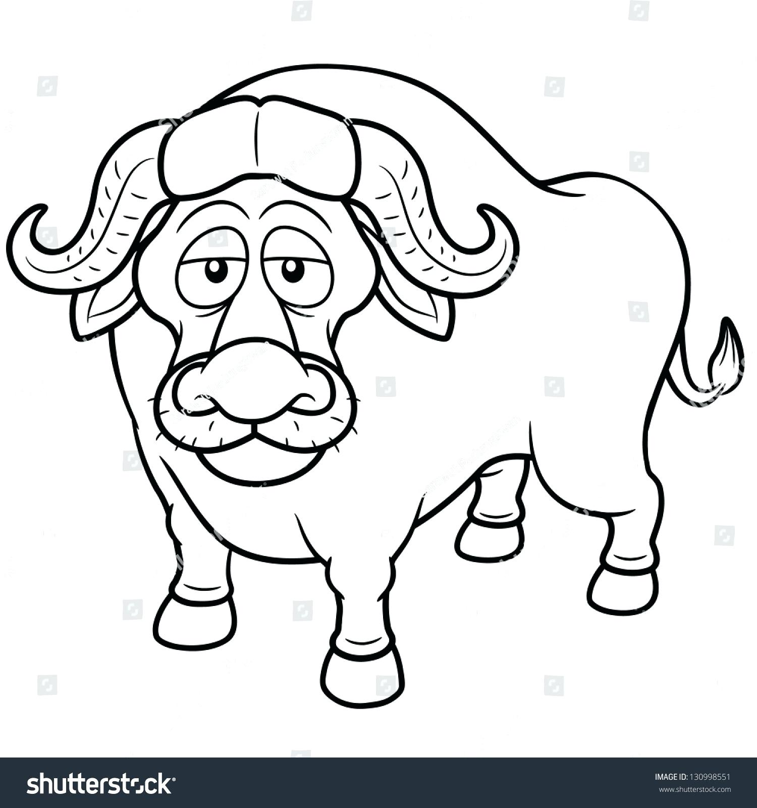 1500x1600 Coloring Buffalo Coloring Pictures