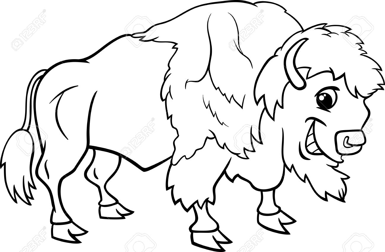 1300x852 Black And White Cartoon Illustration Of Funny Bison Or American