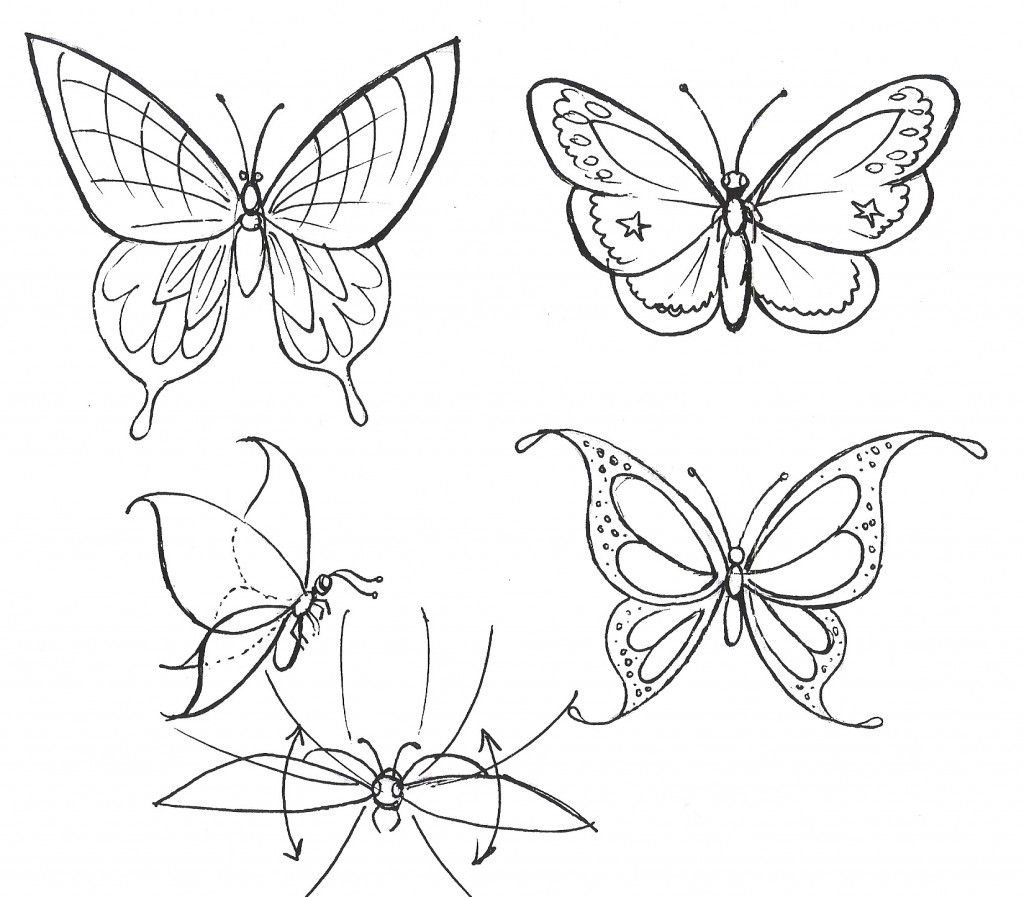 1024x897 Cartoon Butterfly Drawing Butterfly Stepstep Drawing How To Draw