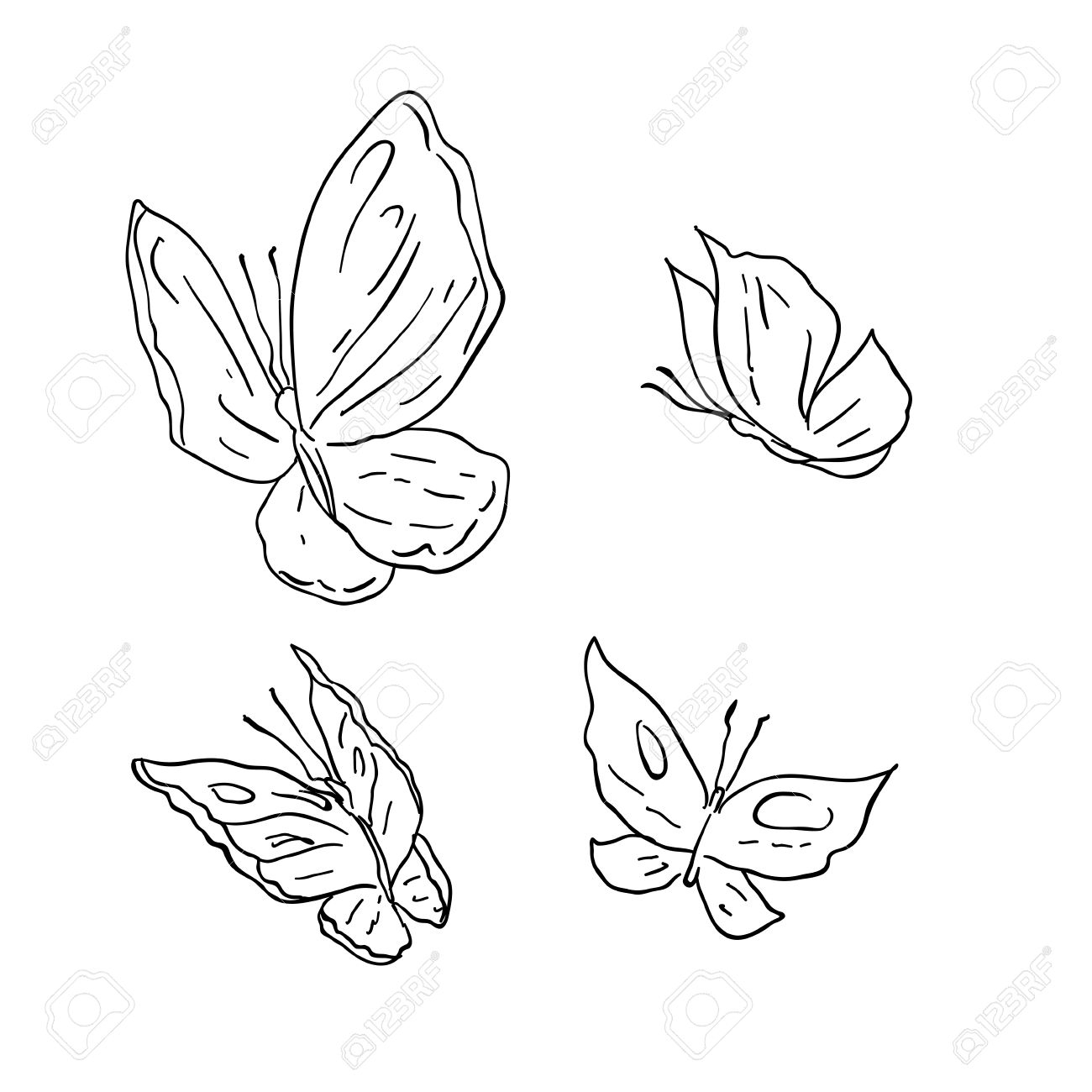 1300x1300 Cartoon Butterfly Drawing Hand Draw Grunge Butterfly Royalty Free