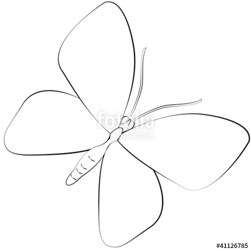 500x500 Cartoon Butterfly. Stock Image And Royalty Free Vector Files