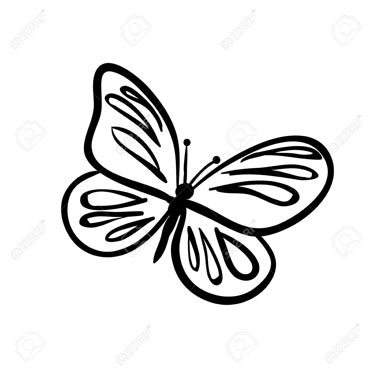 1300x1300 Vector Hand Drawn Butterfly. Black Sketch On White Background