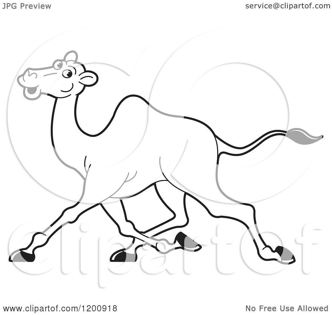 1080x1024 Cartoon Of A Black And White Outlined Running Camel