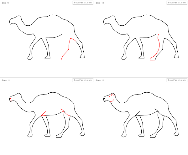 600x495 Fpencil How To Draw Camel For Kids Step By Step