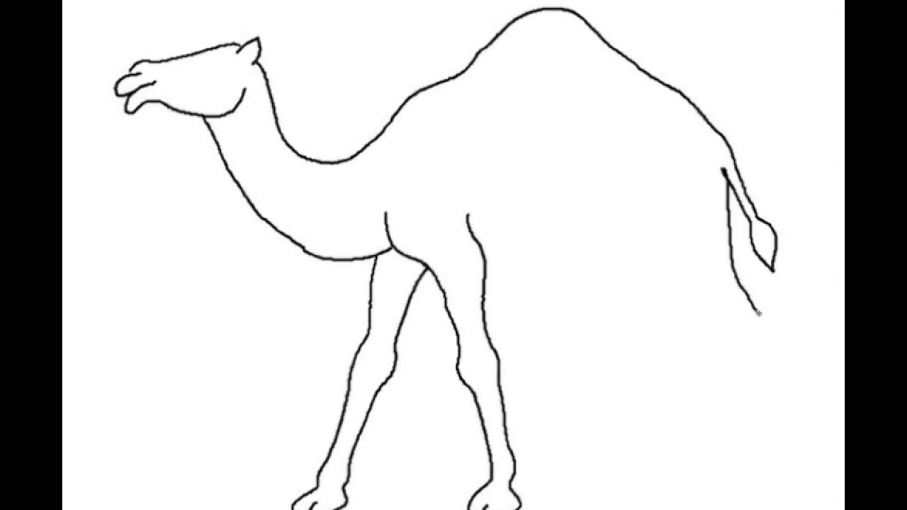 1280x720 How To Draw A Camel Easy Step By Step