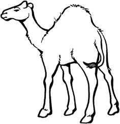 236x245 How To Draw A Camel Learn To Draw Camels, Drawings