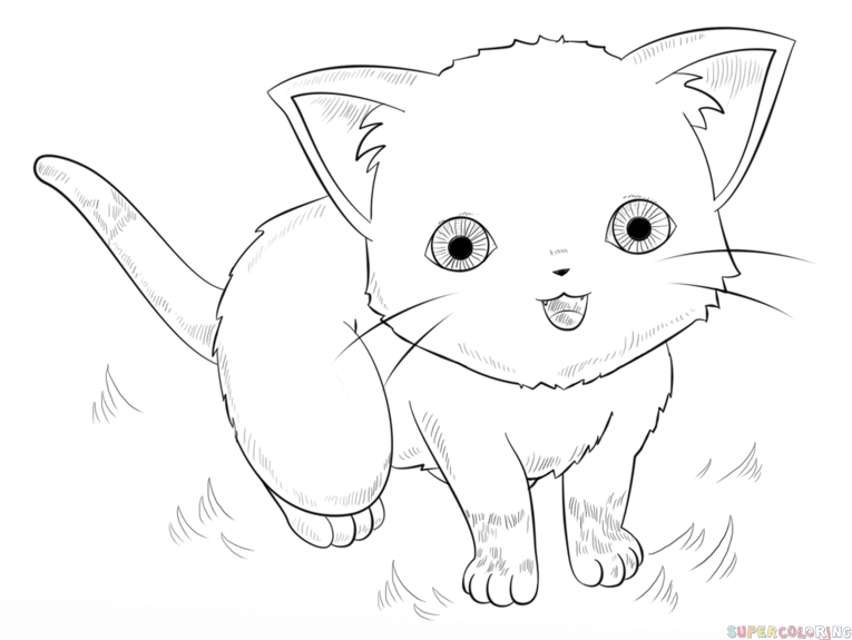 765x575 How To Draw An Anime Cat Step By Step. Drawing Tutorials For Kids