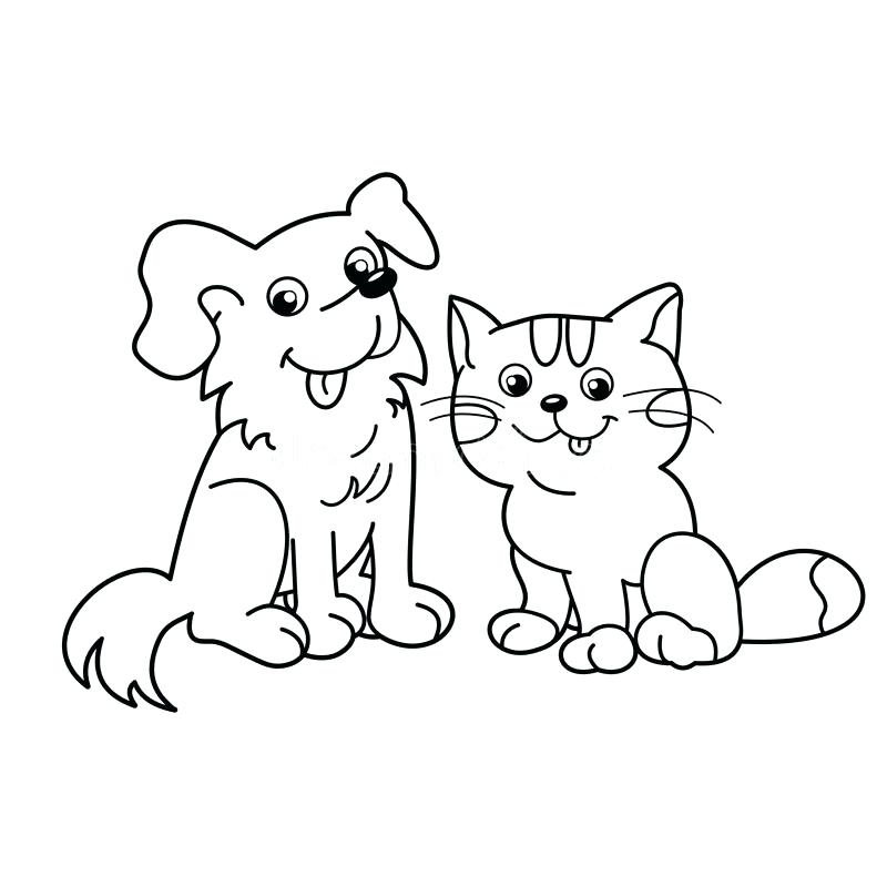800x800 Awesome Coloring Pages Cats And Dogs Image Page Outline Of Cartoon