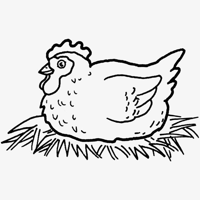 650x651 Jane Hen, Cartoon Chicken Coop, Egg, Cartoon Hen Png Image