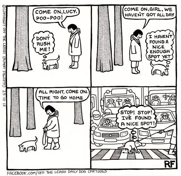 700x681 Hilarious Comics About Life With Dogs By The Leash