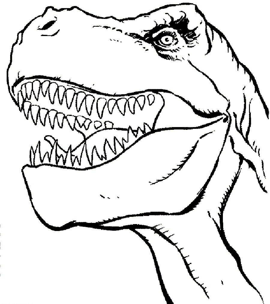 900x1012 Dinosaurs Head Coloring Pages Colouring In Funny Draw Print