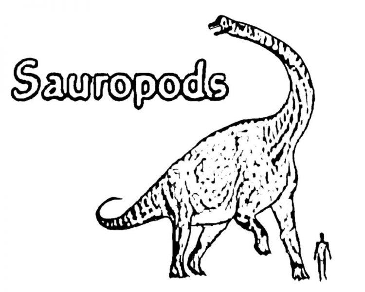 750x600 Drawing Easy Dinosaur Drawing Tutorial With Cartoon Dinosaur