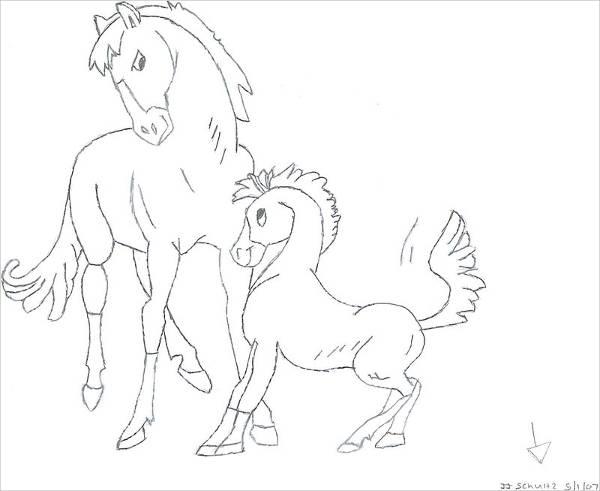 600x491 Horse Drawings