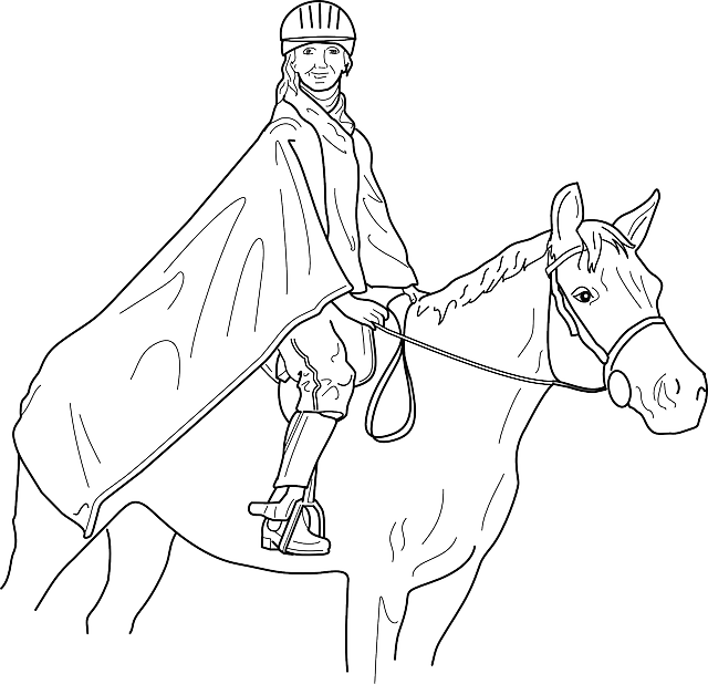 640x618 Outline, Man, Cartoon, Horse, Horses, Draw, Animal