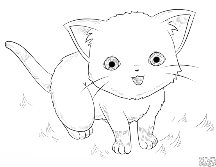 743x575 How To Draw An Anime Cat Step By Step Drawing Tutorials Warmup