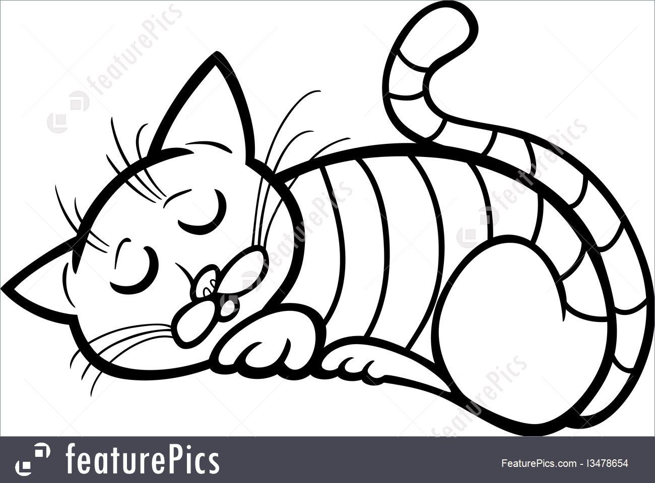 1300x960 Pets Sleeping Cat Cartoon For Coloring