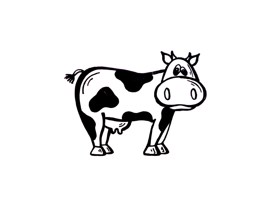 1024x768 Simple Drawing Of Cow