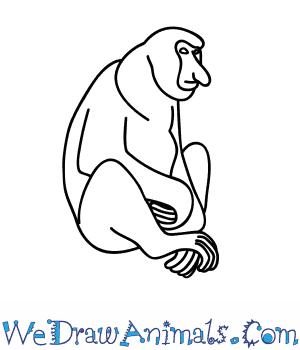 300x350 How To Draw A Proboscis Monkey
