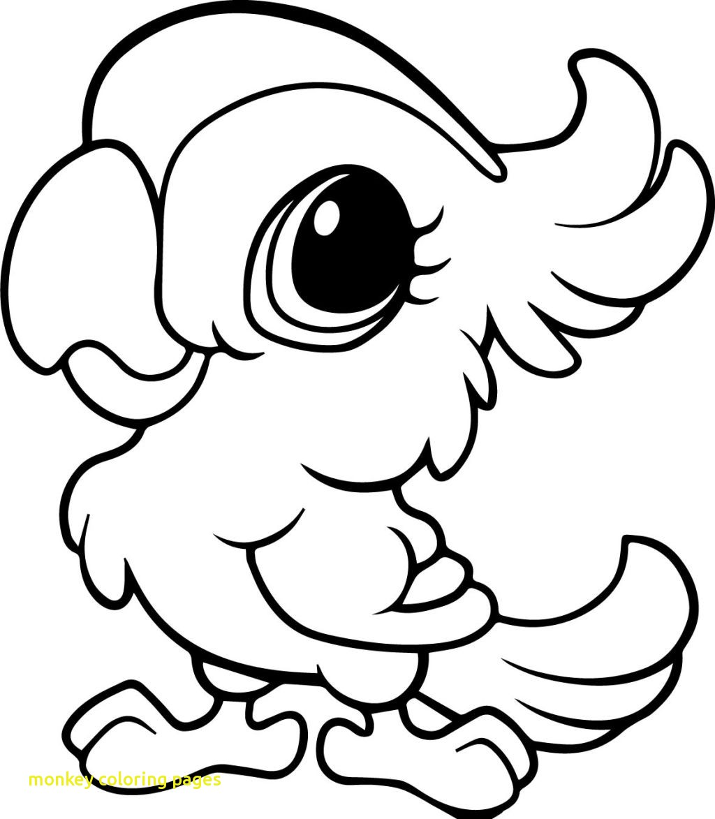 Cartoon drawing of monkey at free for for Cartoon monkey coloring pages