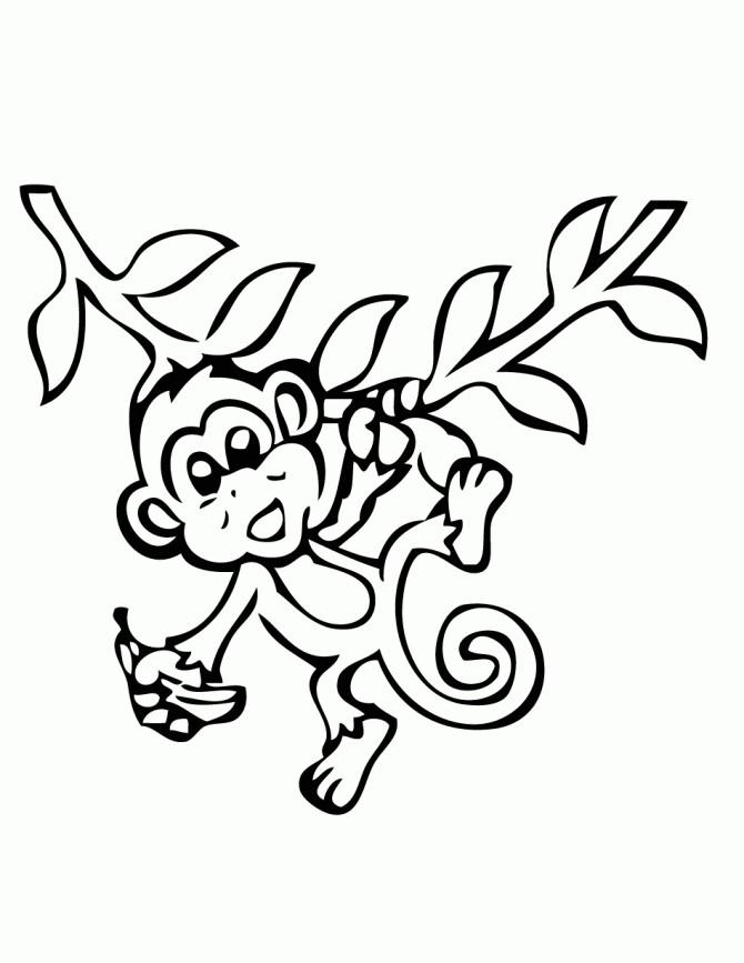 670x867 Monkey Drawing Monkey Nursery Theme Monkey Drawing