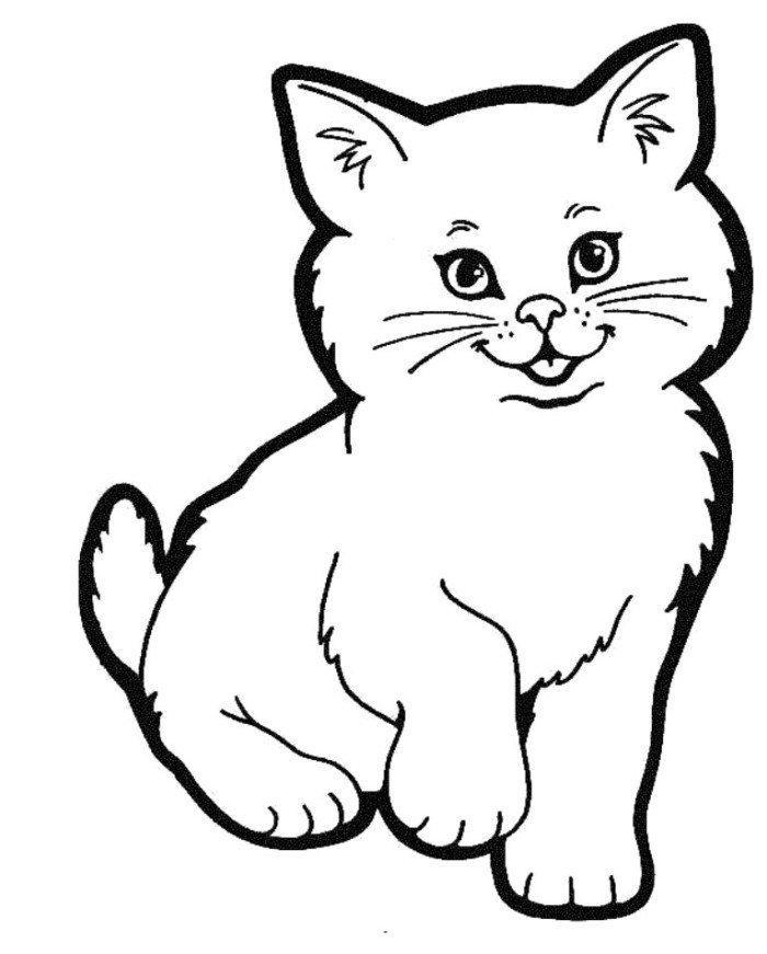 700x871 How To Draw A Cute Realistic Cat Cartoon Face Step By Step