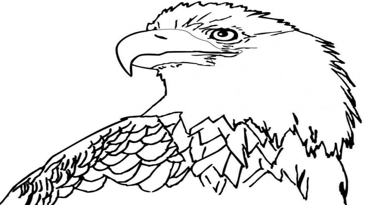 1280x720 Bald Dad Coloring Cartoon Eagle Clip Art
