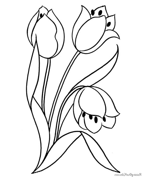 600x734 Flower Blooming Coloring Page