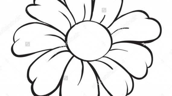 Cartoon flowers drawing at getdrawings free for personal use 570x320 sketches of flowers how to draw a rose flower sketch a rose flower mightylinksfo