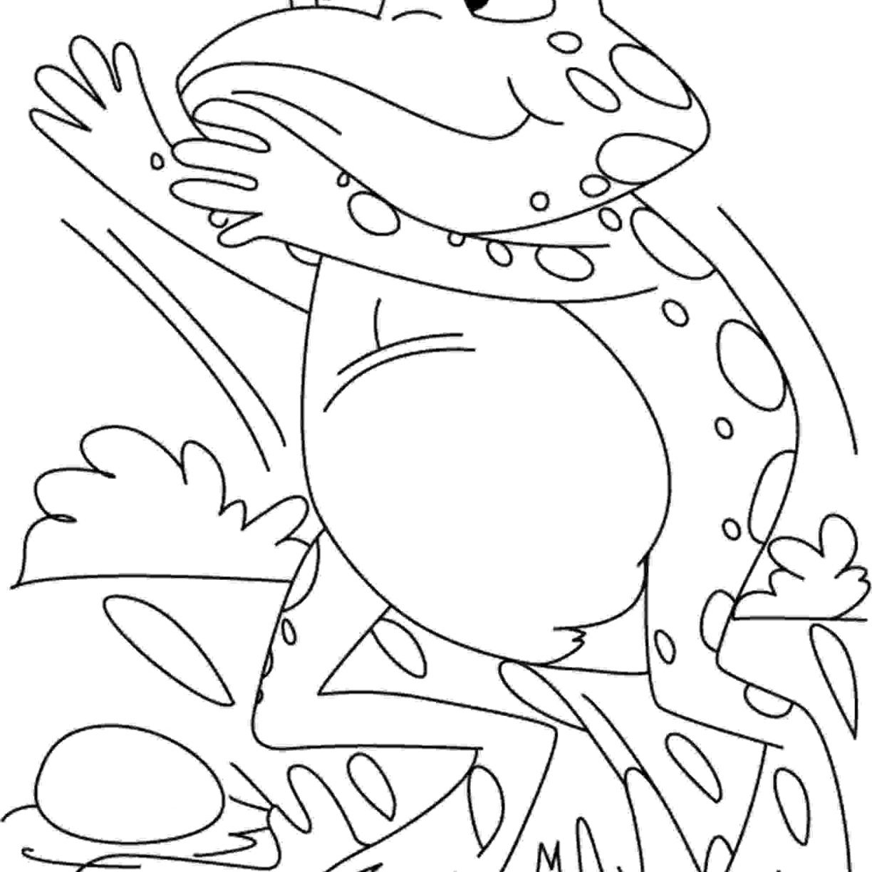 1224x1224 Green Eyed Tree Frog Coloring Page Free Printable Excellent Pages