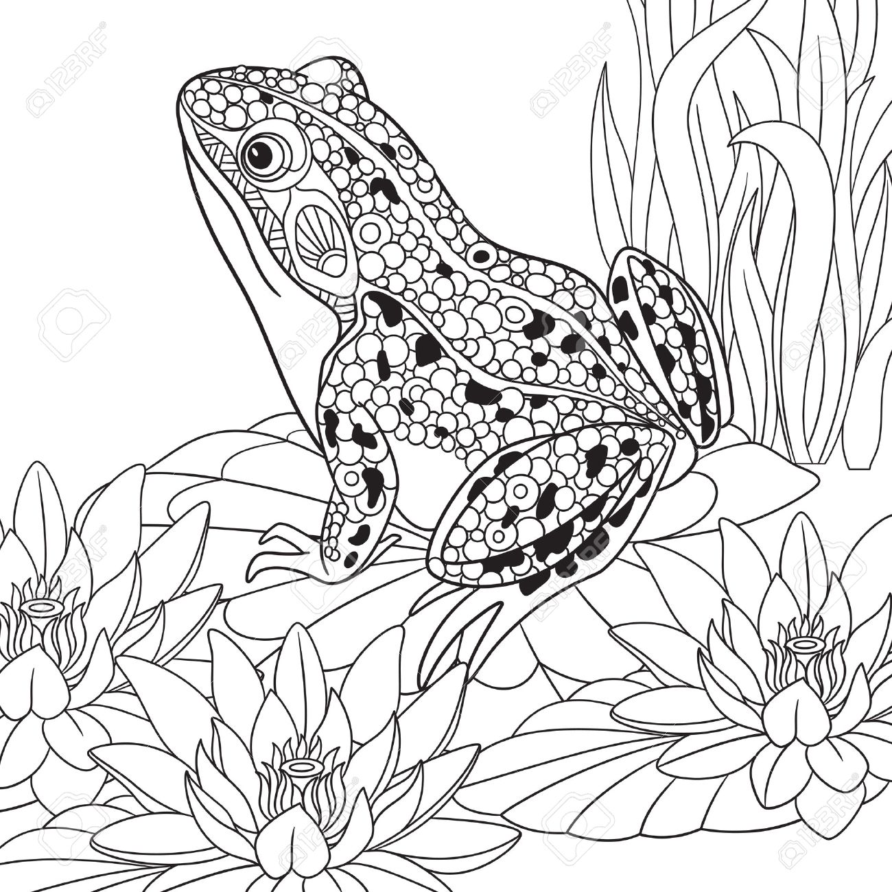 1300x1300 Zentangle Stylized Cartoon Frog Sitting Among Lotus Flowers