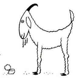 250x257 How To Draw Goats Drawing Tutorials Amp Drawing Amp How To Draw