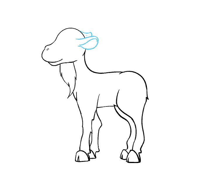 678x600 How To Draw A Cartoon Goat In A Few Easy Steps Easy Drawing Guides