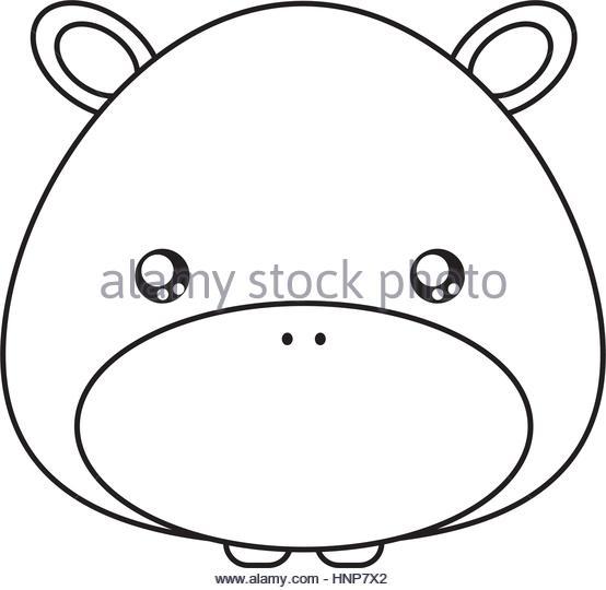 554x540 Cartoon Hippo Face Stock Photos Amp Cartoon Hippo Face Stock Images