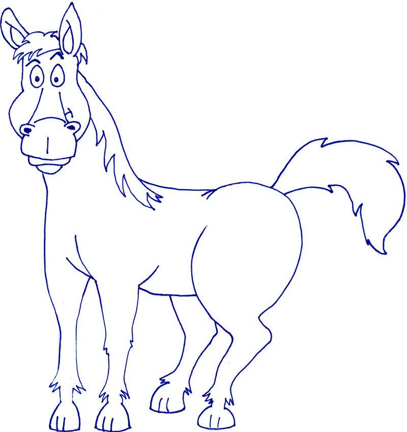 Cartoon Horse Drawing