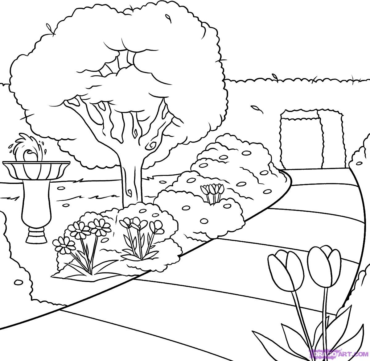 1200x1170 How To Draw A Garden Step 6 Drawing Outline Images