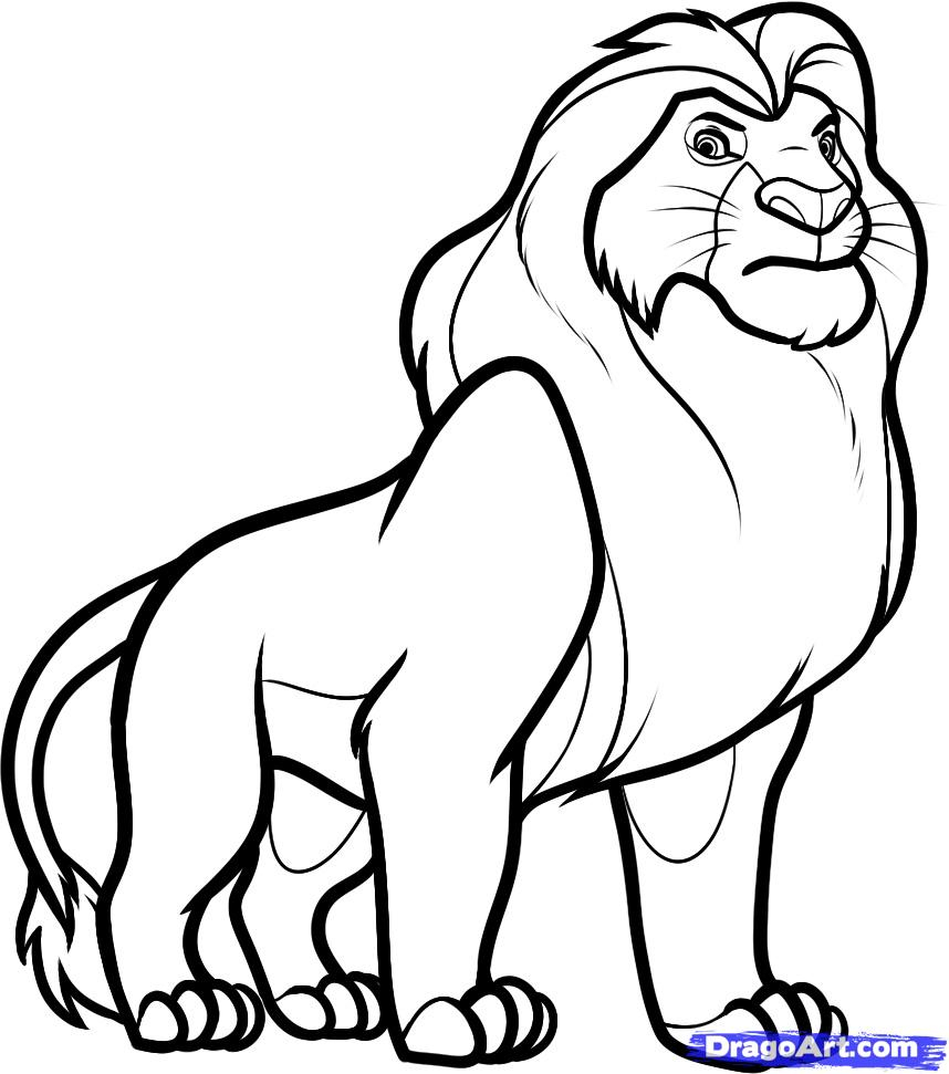 858x971 Cartoon Lion Drawing 8. How To Draw Mufasa From Lion King