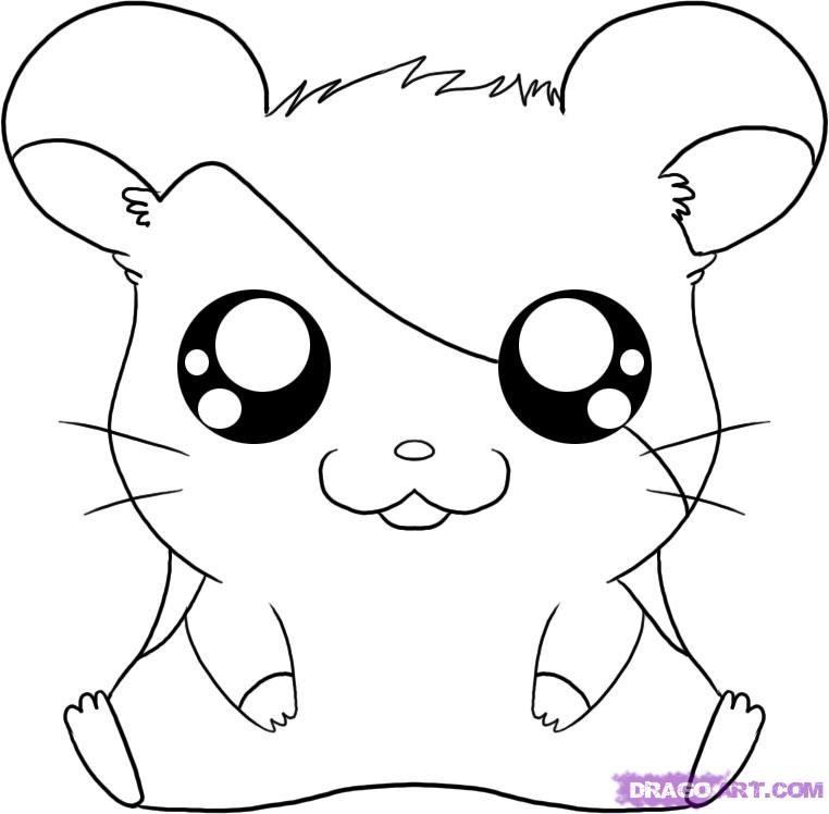 762x748 How To Draw Cartoons Hamtaro From The Adventures Of