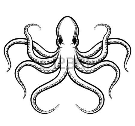 450x420 Tentacle Clipart Octopus Drawing