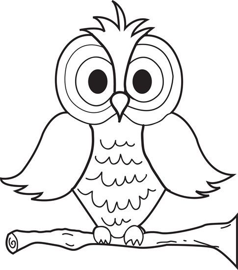 Cartoon Owl Drawing