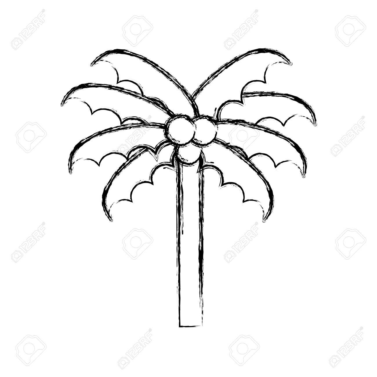 1300x1300 Sketch Draw Cute Beach Palm Cartoon Vector Graphic Design Royalty