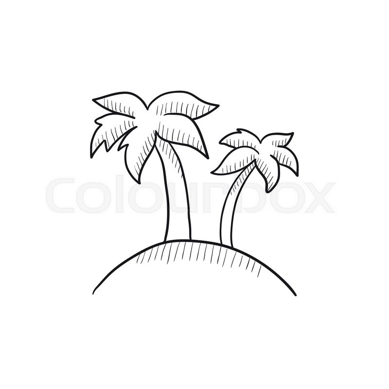 800x800 Two Palm Trees On Island Vector Sketch Icon Isolated On Background