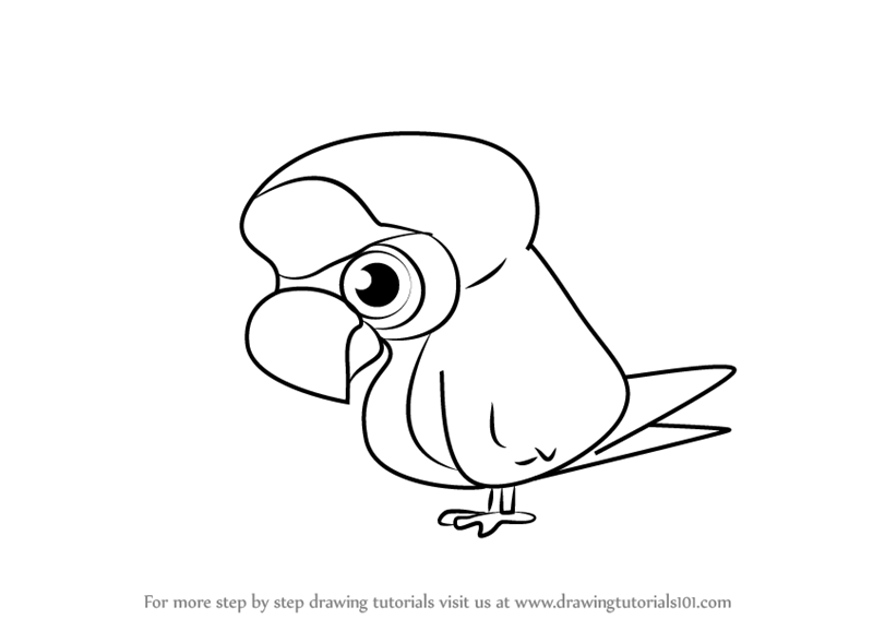 800x567 Learn How To Draw Parrot From Professor Layton (Professor Layton