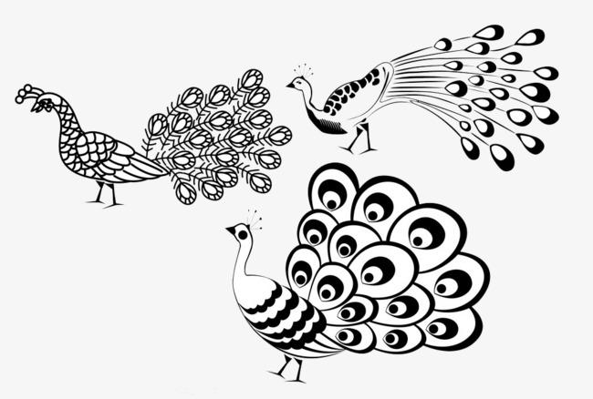 650x438 Creative Peacock, Peacock, Cartoon Peacock, Peacock Stick Figure