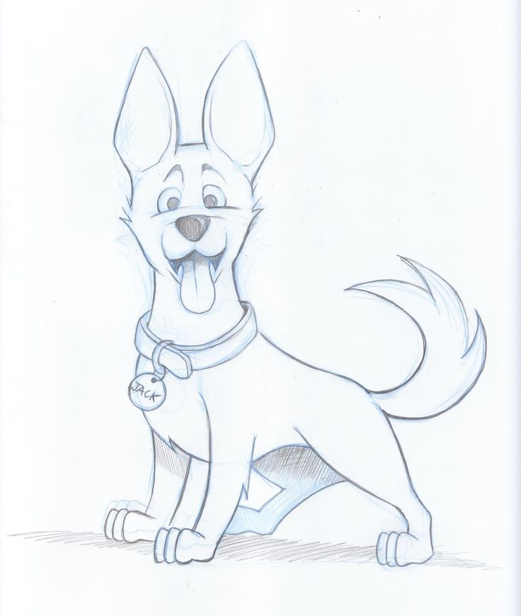 736x870 The Best Dog Drawings Ideas On How To Draw Dogs