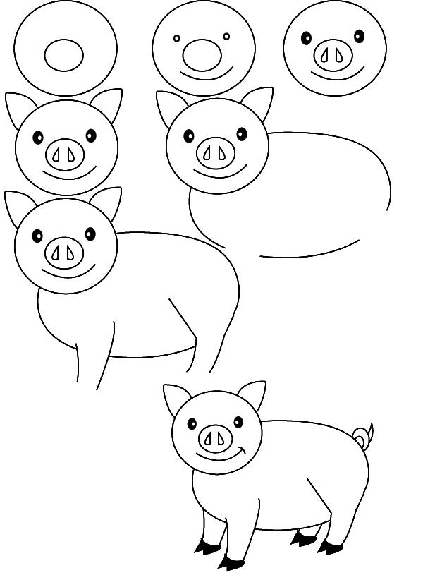600x822 Drawing Pig