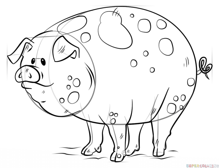 748x575 How To Draw A Cartoon Pig Step By Step Drawing Tutorials