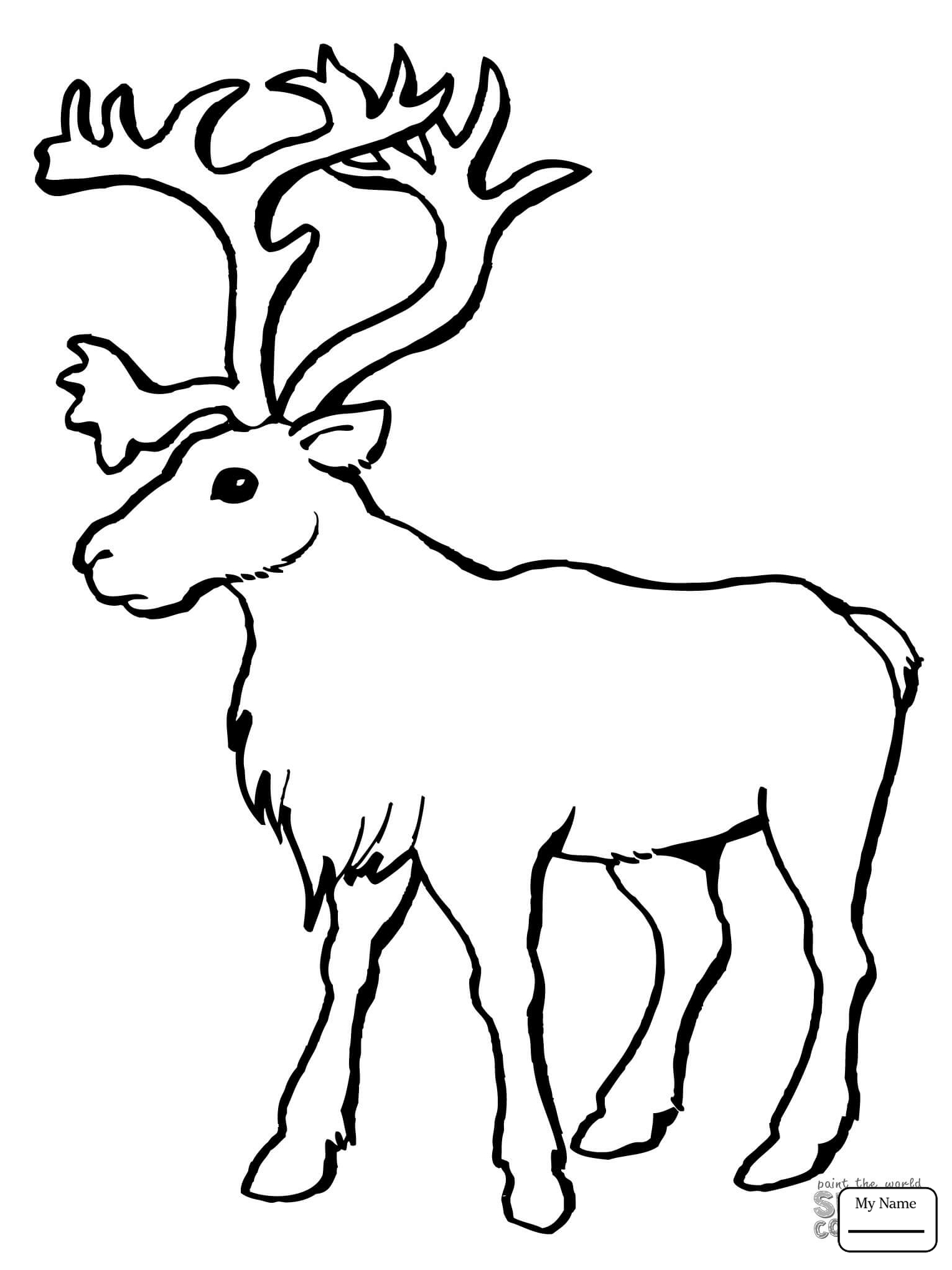 1530x2040 Coloring Pages For Kids Mammals Cartoon Reindeer Reindeer