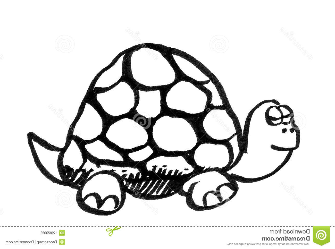 1300x967 Cartoon Turtle Drawings Turtles How To Draw A Cartoon Sea Turtle